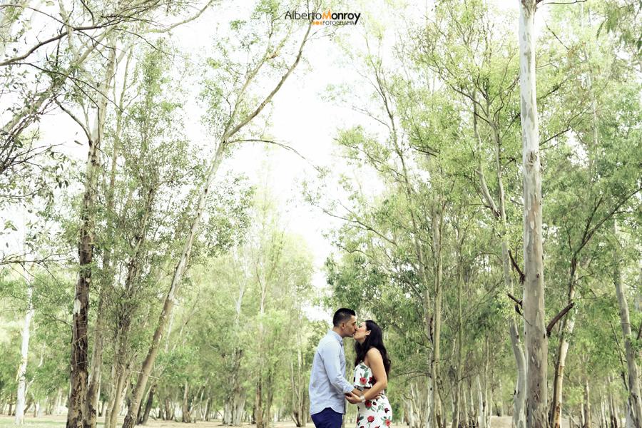 preboda, fotografo de bodas en cadiz, polvos holi-2
